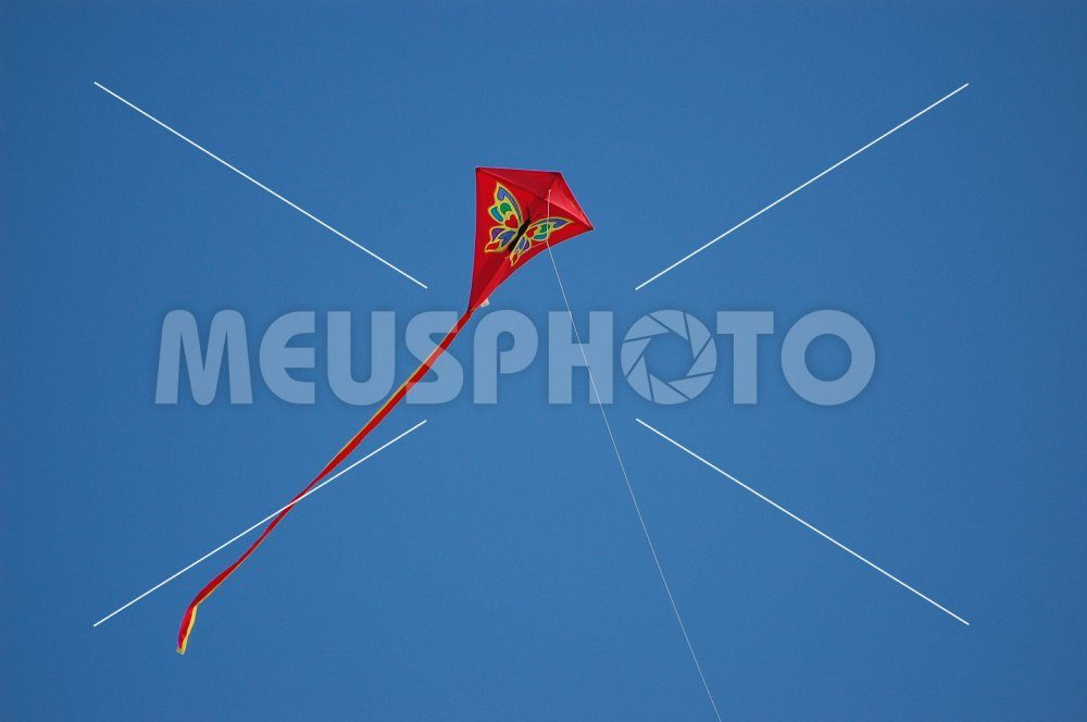 Red kite flying in the sky - MeusPhoto